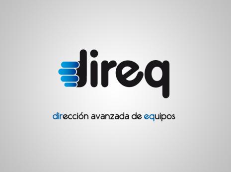 Diseño gráfico y web Granada, mimográfico. Logotipo Direq 2